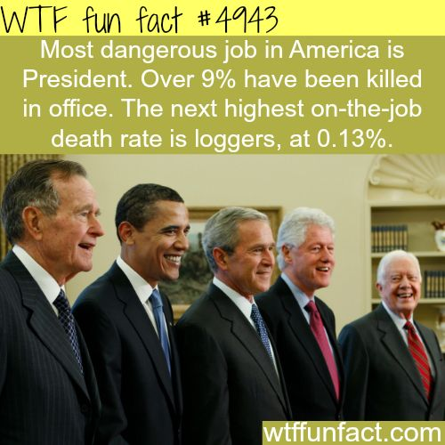 POTUS - The Most Dangerous Job In America! - Hmm! ...Job is an ELECTED 4 year Term (MAX. 2 Term LIMIT Per President!) - With Over 9% Mortality!?! ~WTF? not-a-fun fact