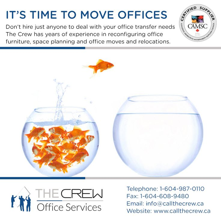 Moving an office takes planning, budgeting, and potentially a quick overnight execution to help your staff stay working and focused on serving your customers. There is nothing that The Crew can't handle!