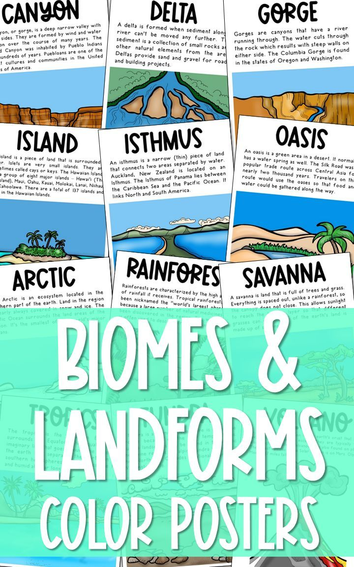 BIOMES AND LANDFORMS Posters | Vocabulary Word Wall | Teachers Pay