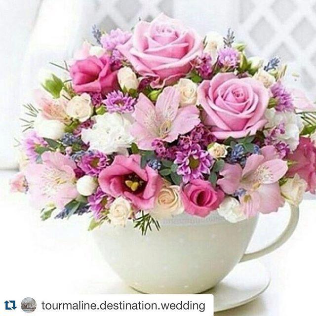 #Repost @tourmaline.destination.wedding With @repostapp