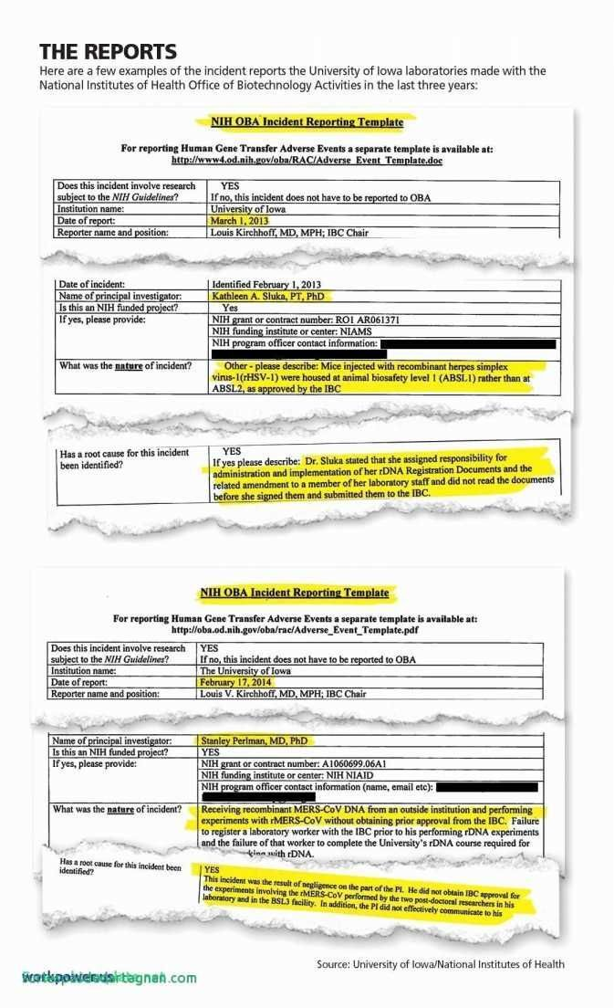 26 Expense Report Templates Excel Detailed Expense Report