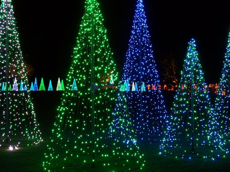 39 Best Magic Christmas In Lights Images On Pinterest Christmas  - Magic Christmas Tree
