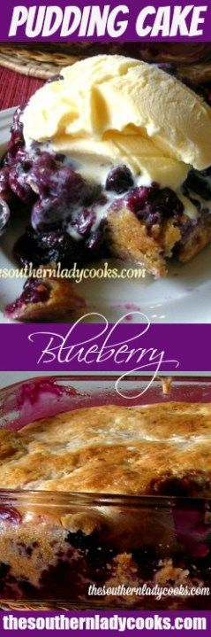 FRESH BLUEBERRY PUDDING CAKE - The Southern Lady Cooks