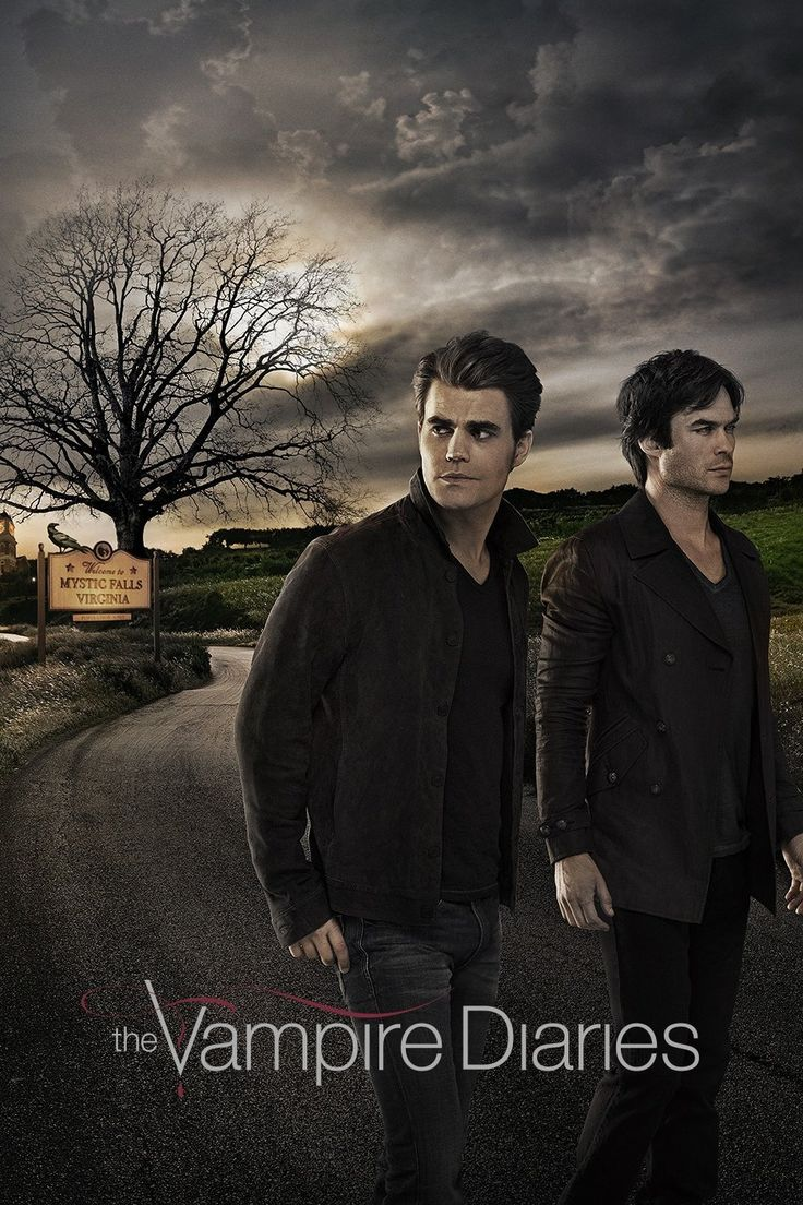 A teenage girl is torn between two vampire brothers.