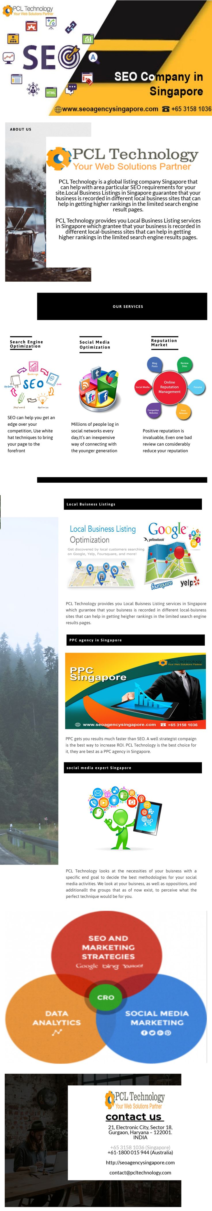 PCL Technology provides a best social media expert in
