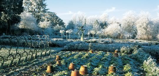 Potager (ornamental vegetable/kitchen garden) - Le Manoir Aux Quat'Saisons, Oxfordshire in winter