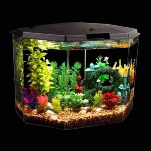 Aqua-Culture-6-5-Gal-Semi-Hex-Aquarium-Full-kit-Filter-Led-Light-Multi-Color