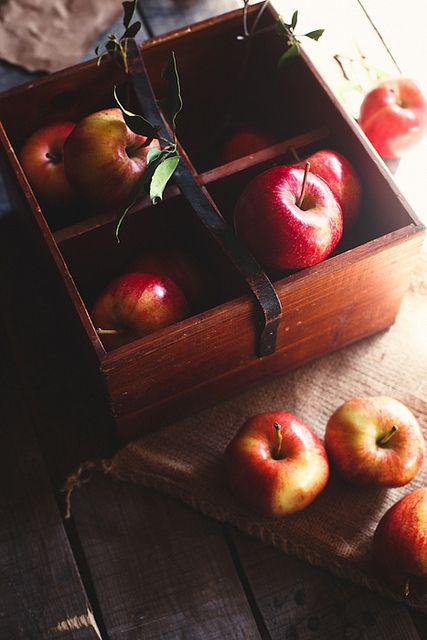 apples by hannah * honey & jam, via Flickr