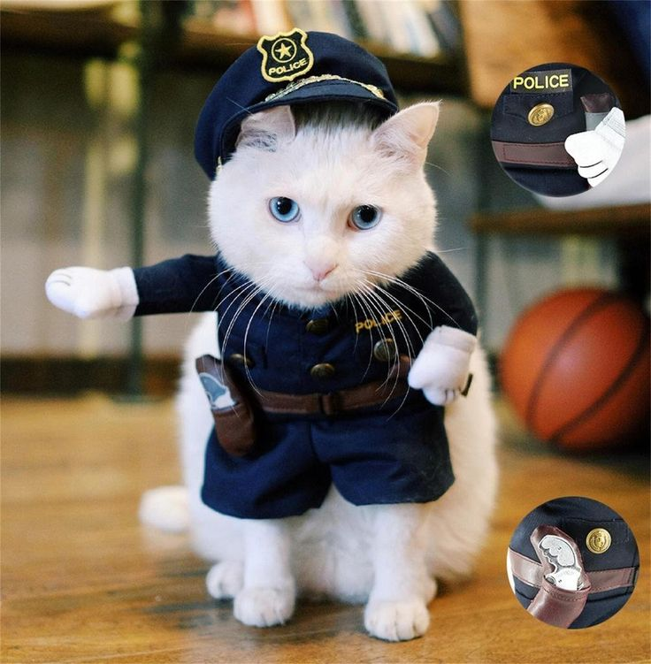PetsLove Pet Policeman Costume Dog Jeans Clothes Cat Funny Apperal -- Find out more about the great product at the image link.