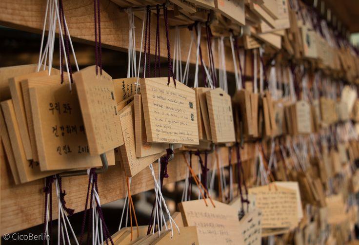 Make a wish - Wunschbretter Tempel Yoyogi Park, Tokyo, Japan