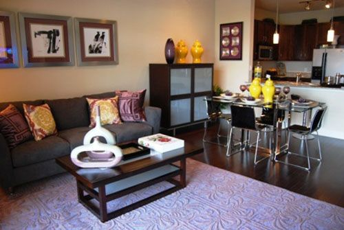 Living Room Dining Room Combo Decorating Ideas On Living Room And