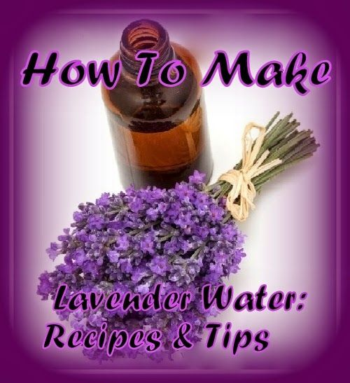 Recipes for natural cosmetics: How To Make Lavender Water: Recipes & Tips