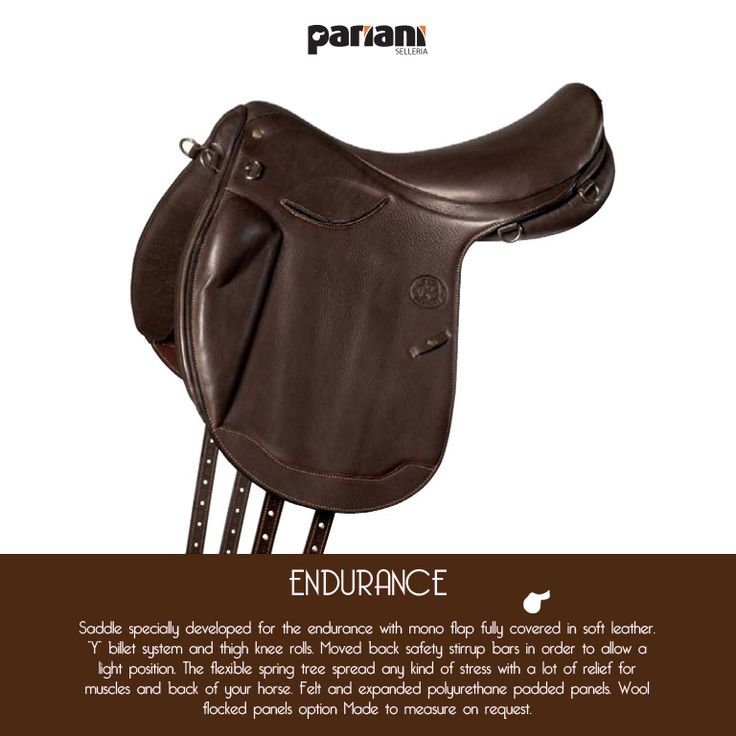 #Endurance saddle... love it!