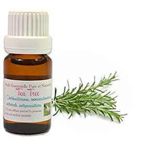 Storage techniques for tea tree oil