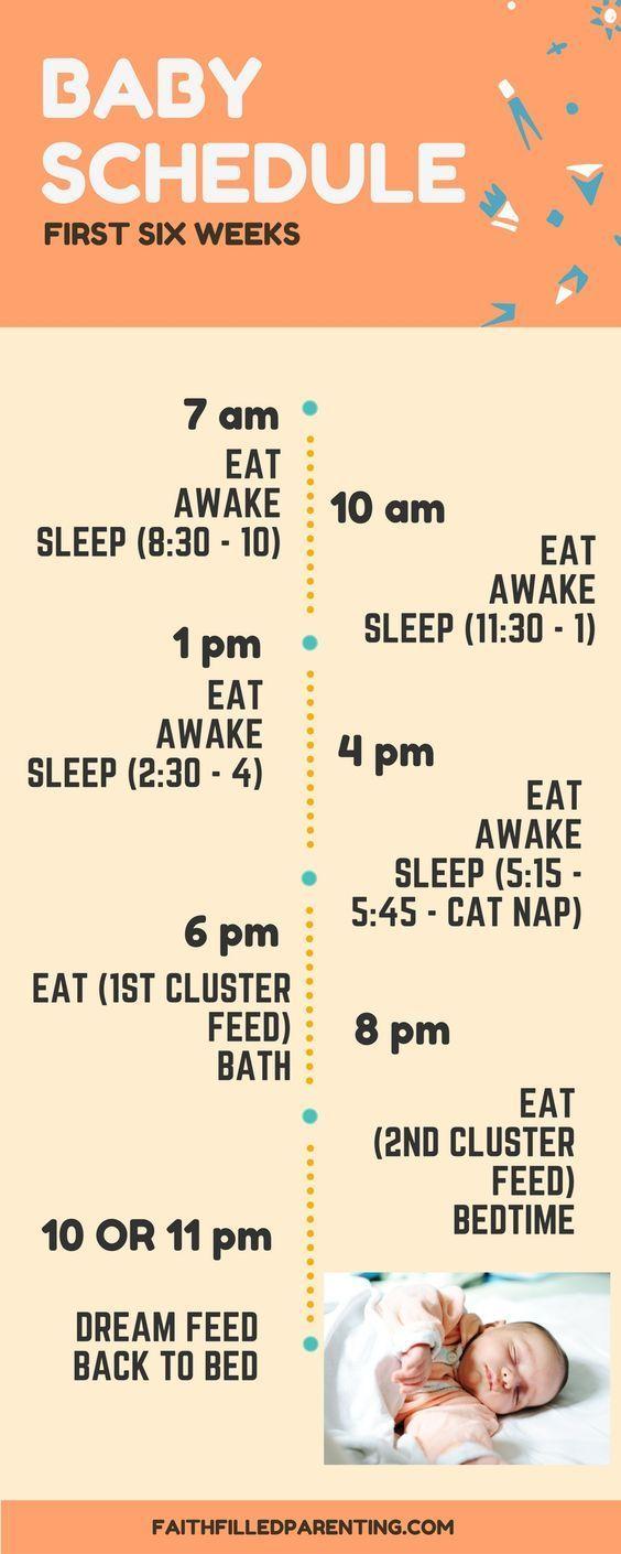 Baby Sleep Schedule Infant - 6 weeks old
