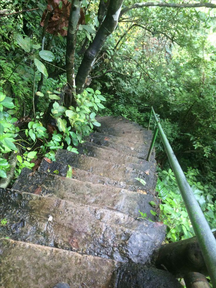 steep steps leading to sekumpul waterfall, bali