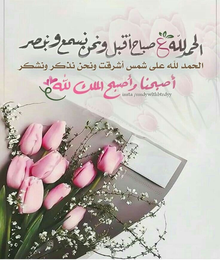 Pin By Mohammed Alsayed On الصباح والمساء Good Morning Images Morning Images Morning Msg