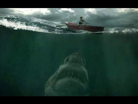 Giant Megalodon Shark? 2015 Real Megalodon Evidence?   XD Pinned just for the laugh. You can completely tell this picture is a fake (I personally think it's a painting)
