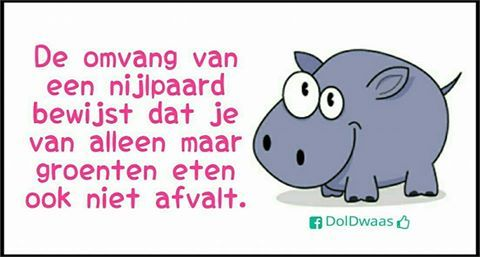 """""""The size of a hippo proves...that from eating only veggies...you won't loose weight eighter."""""""