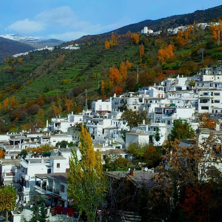 Pampaneira, Bubion y Capileira
