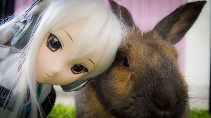 Dollfie Dream Yumi meets cute rabbit Piko! ^O^