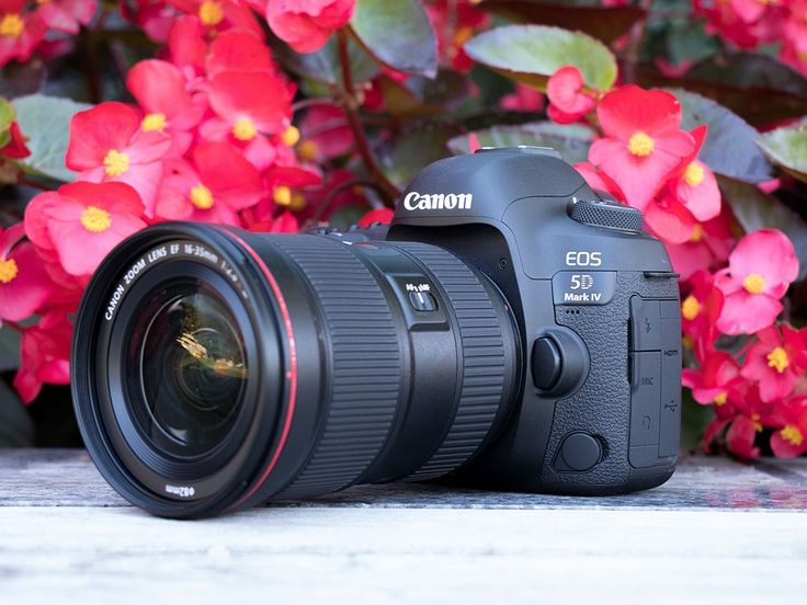 If your interested in the new Canon EOS 5D MARK IV, take a look at the first impression and how it compares to its closest sibling and predecessor.