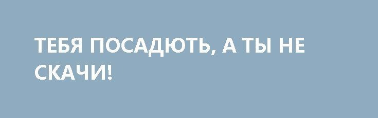 ТЕБЯ ПОСАДЮТЬ, А ТЫ НЕ СКАЧИ! http://rusdozor.ru/2017/04/14/tebya-posadyut-a-ty-ne-skachi/  Навальный – повстанец какой-то никчёмный, Две недели отсидел: «Я политзаключенный!» Пестня «Путин виноват»  Какие же всё-таки жалкие и убогие все эти «непримиримые борцуны с режимом». «Дважды несудимый» за коррупцию борцун с коррупцией Навальный. Лиса, охраняющая курятник. Вор против краж. ...