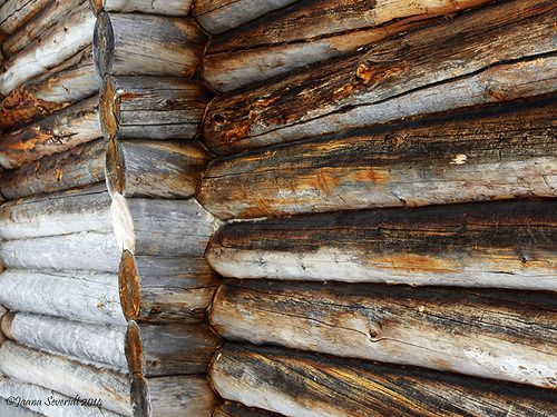 Singatured by time and climate in Keropirtti, Pyhä, Lapland. Photo : Jaana Severidt