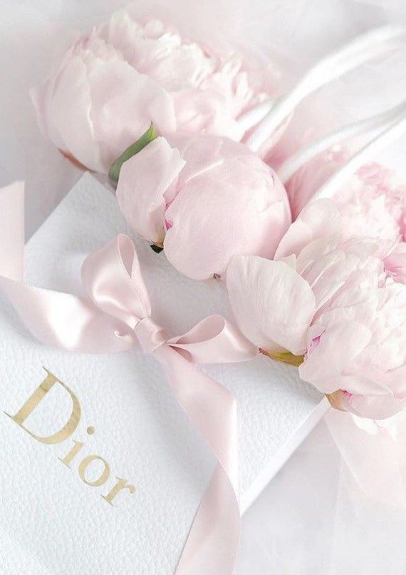 Dior Art Illustration Photography Print Pink Designer Home Decor Floral Pretty Shopping Bag Pink Girly Things Pastel Pink Aesthetic Pink Aesthetic