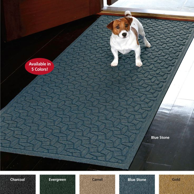 rugs doormat and top doormats for best dry keep doggy your rug clean dog home options a dogs to