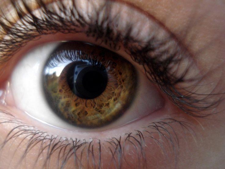 Rzęsy są niewątpliwie najbardziej uderzającą częścią naszych oczu. Bez względu na to jakiego są kształtu lub koloru, długie i gęste rzęsy dodają tajemniczości spojrzeniu, co sprawia iż oczy stają się bardziej atrakcyjne. Aby dodać naszym rzęsom pełniejszego wyglądu, zazwyczaj sięgamy po tusz lub sztuczne rzęsy. Dlaczego więc nie sięgnąć po naturalne sposoby aby zafundować sobie piękne i długie rzęsy?