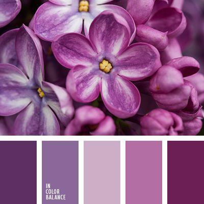 оттенки насыщенного фиолетового цвета, оттенки пурпурного, оттенки фиолетово-голубого цвета, оттенки фиолетового, пурпурный цвет, розовый, розовый и фиолетовый, сиреневый цвет, фиолетовый и розовый, холодные оттенки фиолетового.