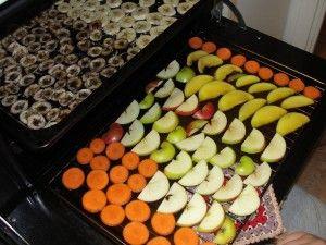ECO-IDEAS Y RECICLAJE : Deshidratar frutas y verduras