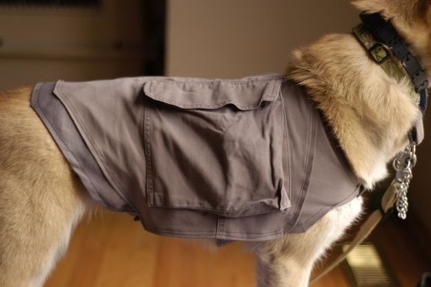 Chaleco para perro / Mochila (¡de pantalones cargo!) | 33 Manualidades para tus mascotas completamente realizables