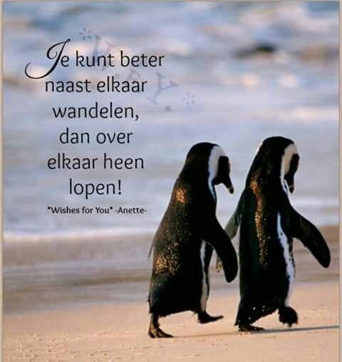 Je kunt beter naast elkaar wandelen, dan over elkaar heen lopen!