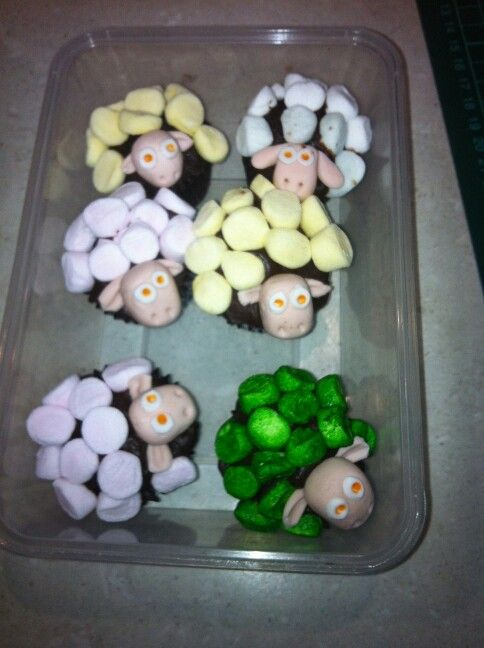 Where is the Green sheep cupcakes
