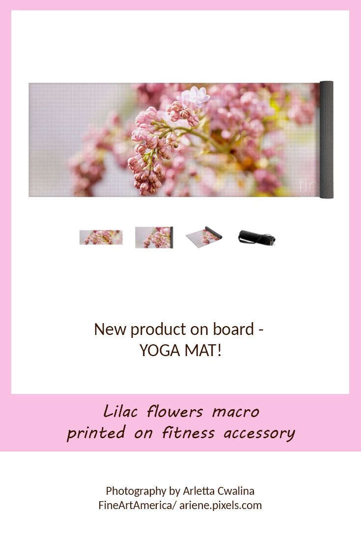 I must admit that the new product - YOGA MAT from FineArtAmerica looks just perfect with my photography printed on it! Look at the lilac pink flowers macro. Photography by Arletta Cwalina/ ariene.pixels.com. See more clothes and home decor ideas and if you love it, feel free to share, maybe your friends would like to have it too :) #fitness #yoga #mat #lilacs