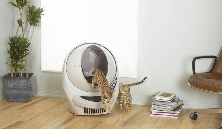 Cette litière autonettoyante va vous changer la vie et celle de votre chat !