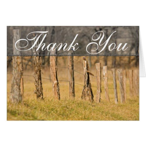 Mountain Wedding Thank You Cards Country Fences Post W Birds Fall Thank You Card