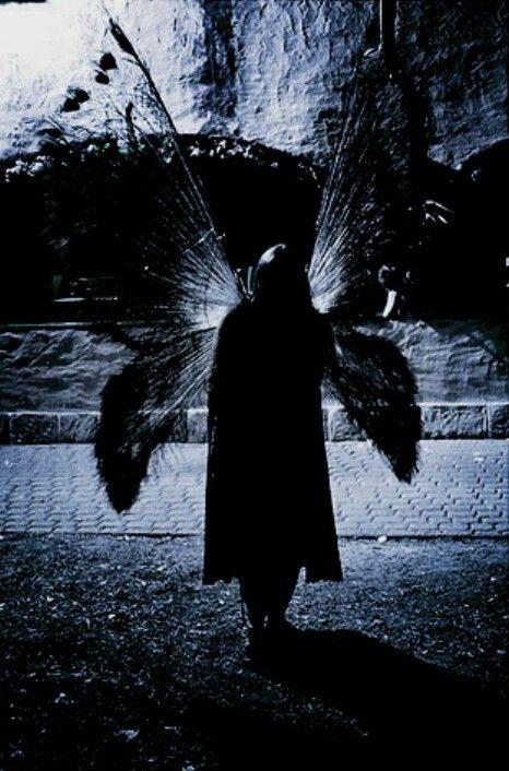 Qui de nous des anges ou des démons que nous.