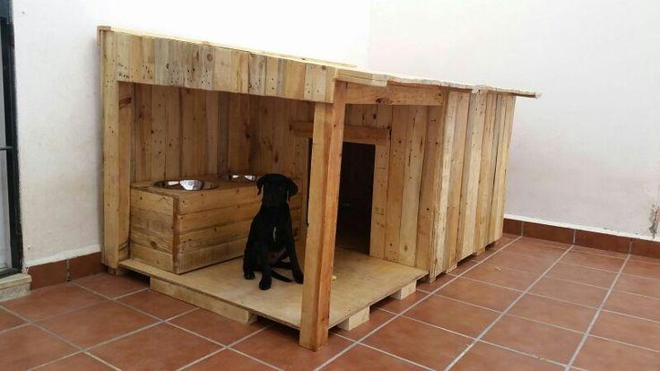 The 25 best ideas about caseta perro on pinterest for Casetas para perros aki