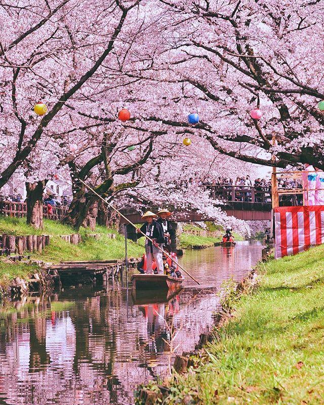 Japan Travel Planet Japantravelplanet Instagram Photos And Videos Atomi