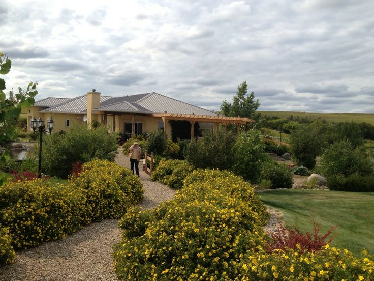 Cypress Hills Winery - Suggested by CDHA #winery