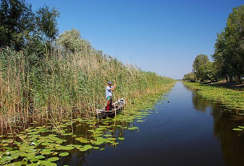fishing in Danube Delta.