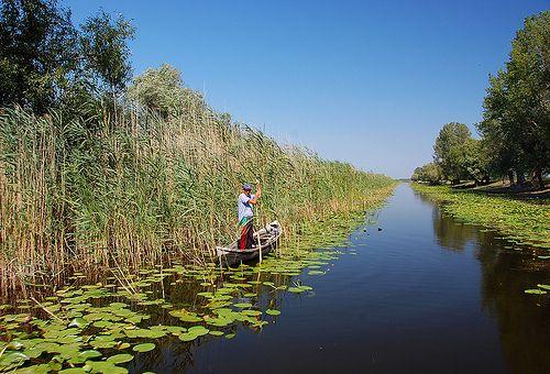 pescuit in Delta Dunarii - fishing in Danube Delta.