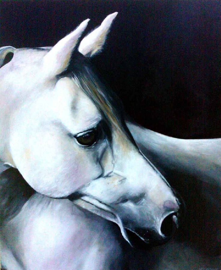 The Gray by Neil O'Dwyer on ArtClick.ie Irish Connemara Equine Art