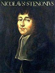 Nicolas Steno - Wikipedia