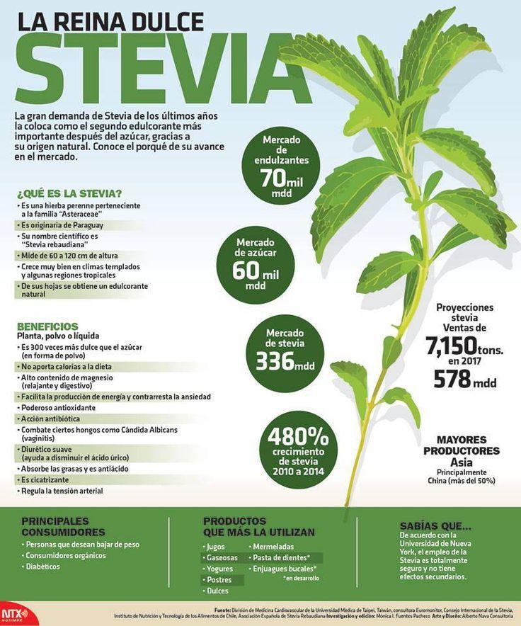 20150823 Infografia Stevia La Reina Dulce @Candidman