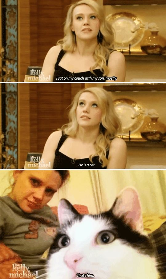 This really is important, the fact that her son is a cat. | 19 Moments That Will Reinforce Your Crush On Kate McKinnon
