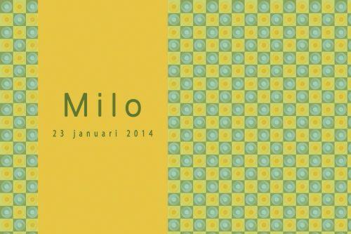 Geboortekaartje jongen of meisje retro - Pimpelpluis - https://www.facebook.com/pages/Pimpelpluis/188675421305550?ref=hl (# simpel - eenvoudig - retro - naam - origineel - geel - groen)